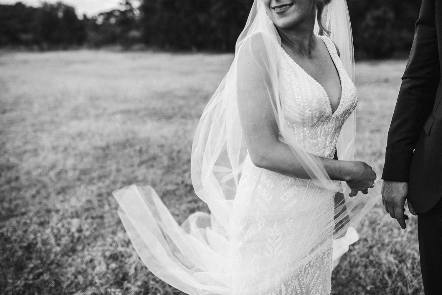 Clements and the Fox, Wedding Photography Pricing